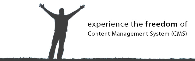 About Content Management System